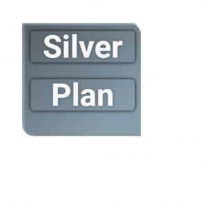 Plan Silver Web